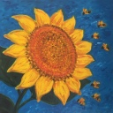 sunflower2018