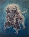 white buffalo- small size