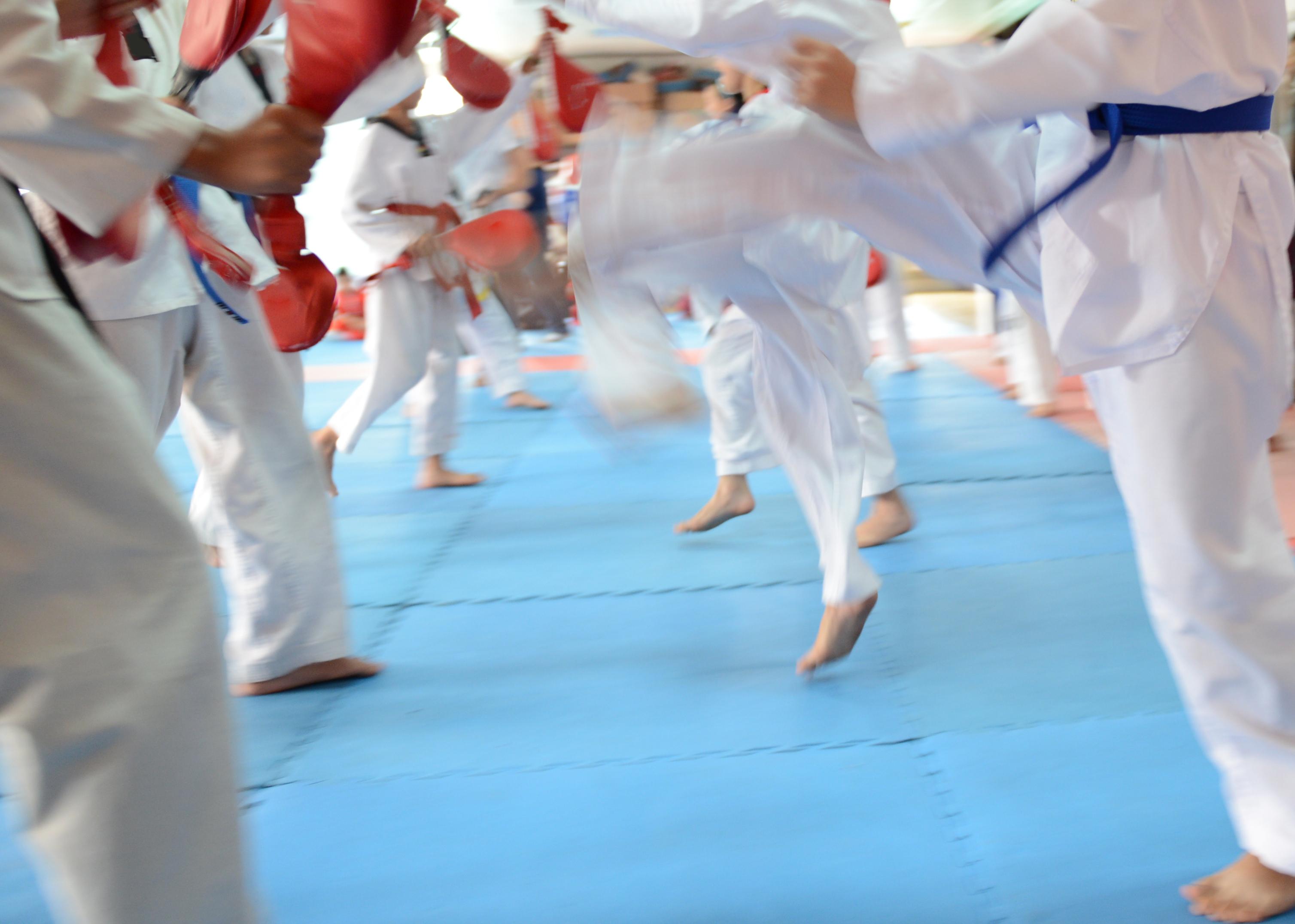 martial arts legs - shutterstock_159265079-2